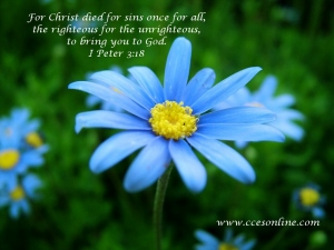 Christian Wallpaper - Blue Flower