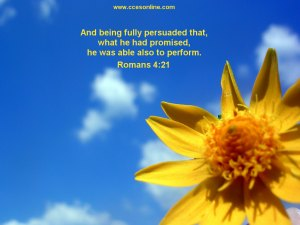 Christian Wallpaper with Yellow Flower Image and Scripture